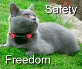 cat fence cat with safety and freedom logo