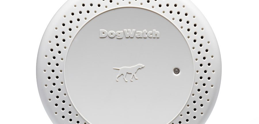 wireless dog fence