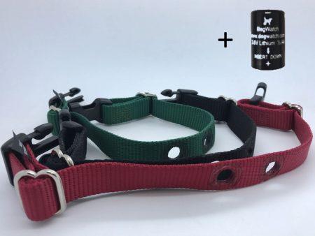 spare medium dog fence collar straps