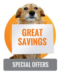 dog fence special offers