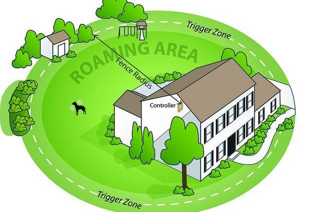 wireless dog fence creates a circle of signal around the boundary.