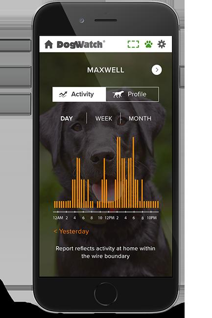 dog fence smart phone activity