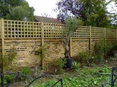 dog fencing using trellis on wall